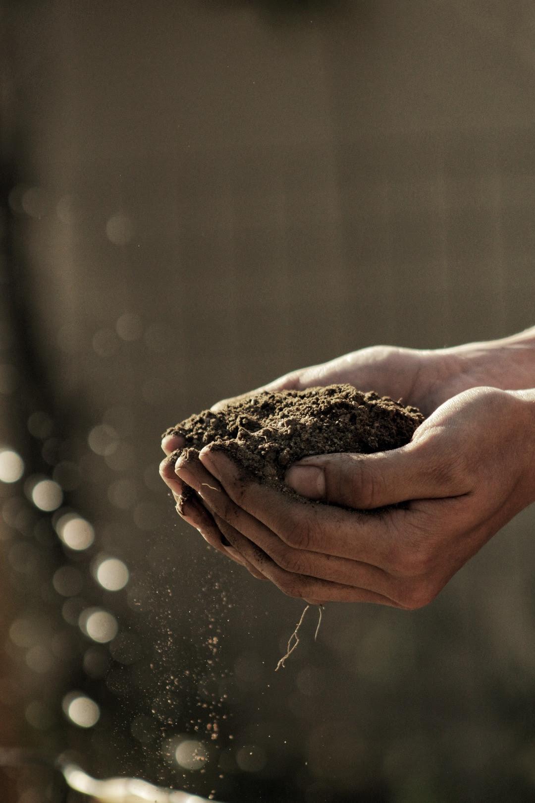 Handfull of Dirt